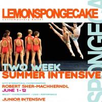 SummerIntensive2015NEWDATESop