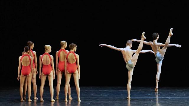 Lemon Sponge Cake Contemporary Ballet - Vienna State Opera Ballet Hanna